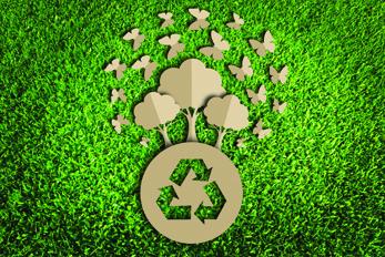 Imgs_347x232-ecologico